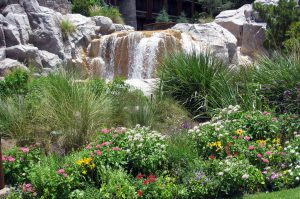 improve your home with landscaping